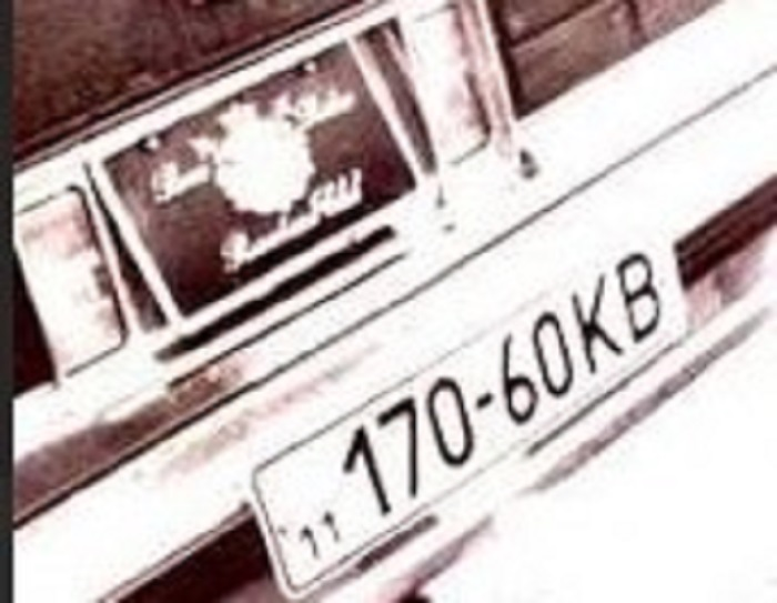 В Украине нашли пропавшее авто первого олигарха Украины Евгения Щербаня  4
