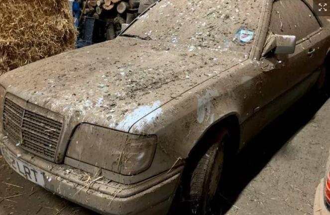 Забытые автомобили Mercedes обнаружили в старом курятнике: плачевный вид 2