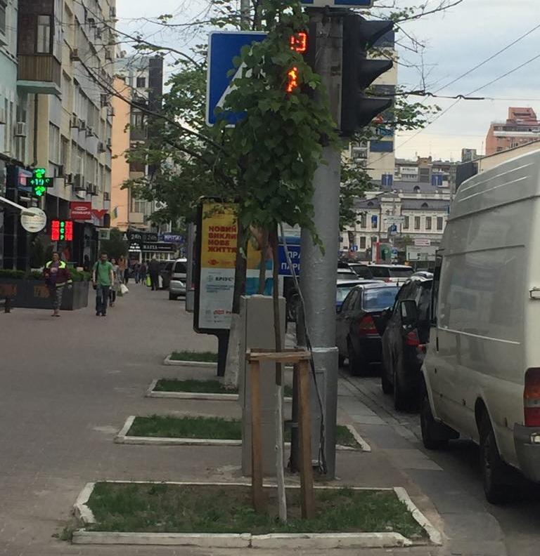 Как не нужно устанавливать светофоры: пример из Киева 1
