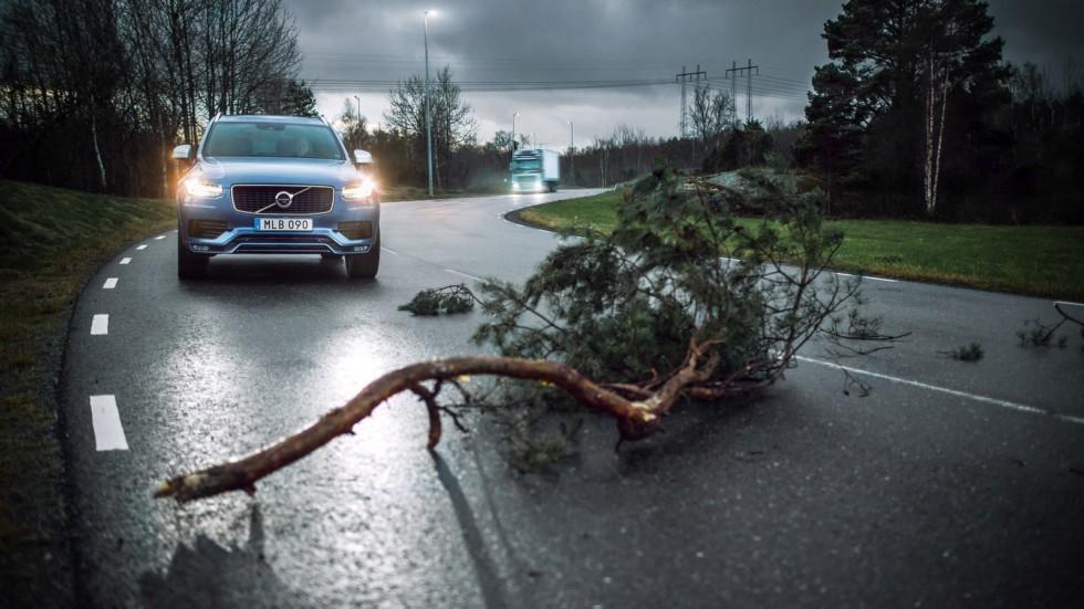 Автомобили Volvo будут «общаться» между собой 2