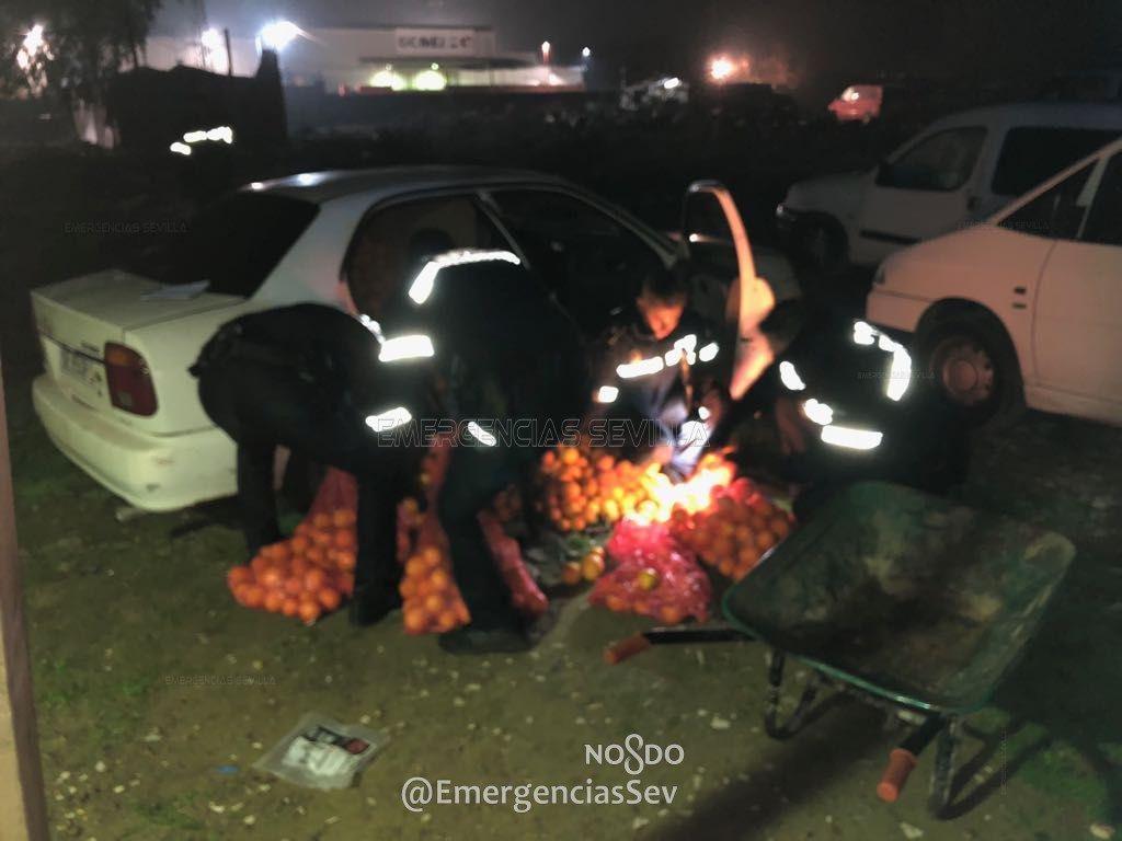 Полиция задержала три автомобиля, под завязку набитых украденными апельсинами 2