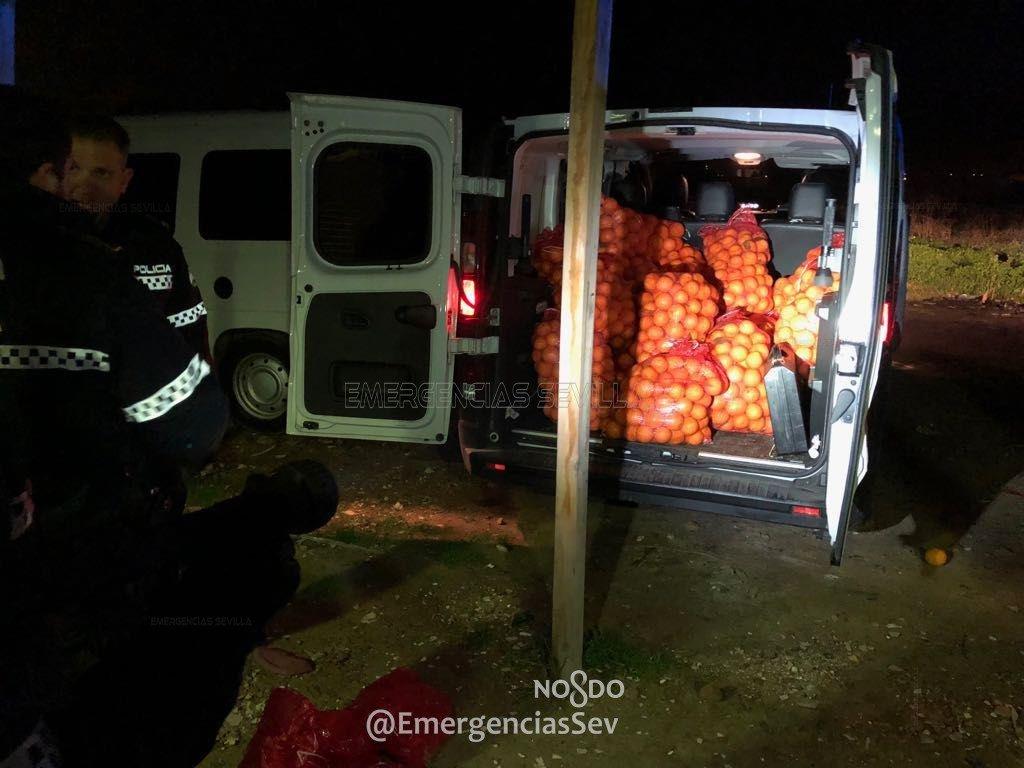 Полиция задержала три автомобиля, под завязку набитых украденными апельсинами 3