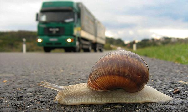 В Европе начнут штрафовать слишком медленных водителей 1