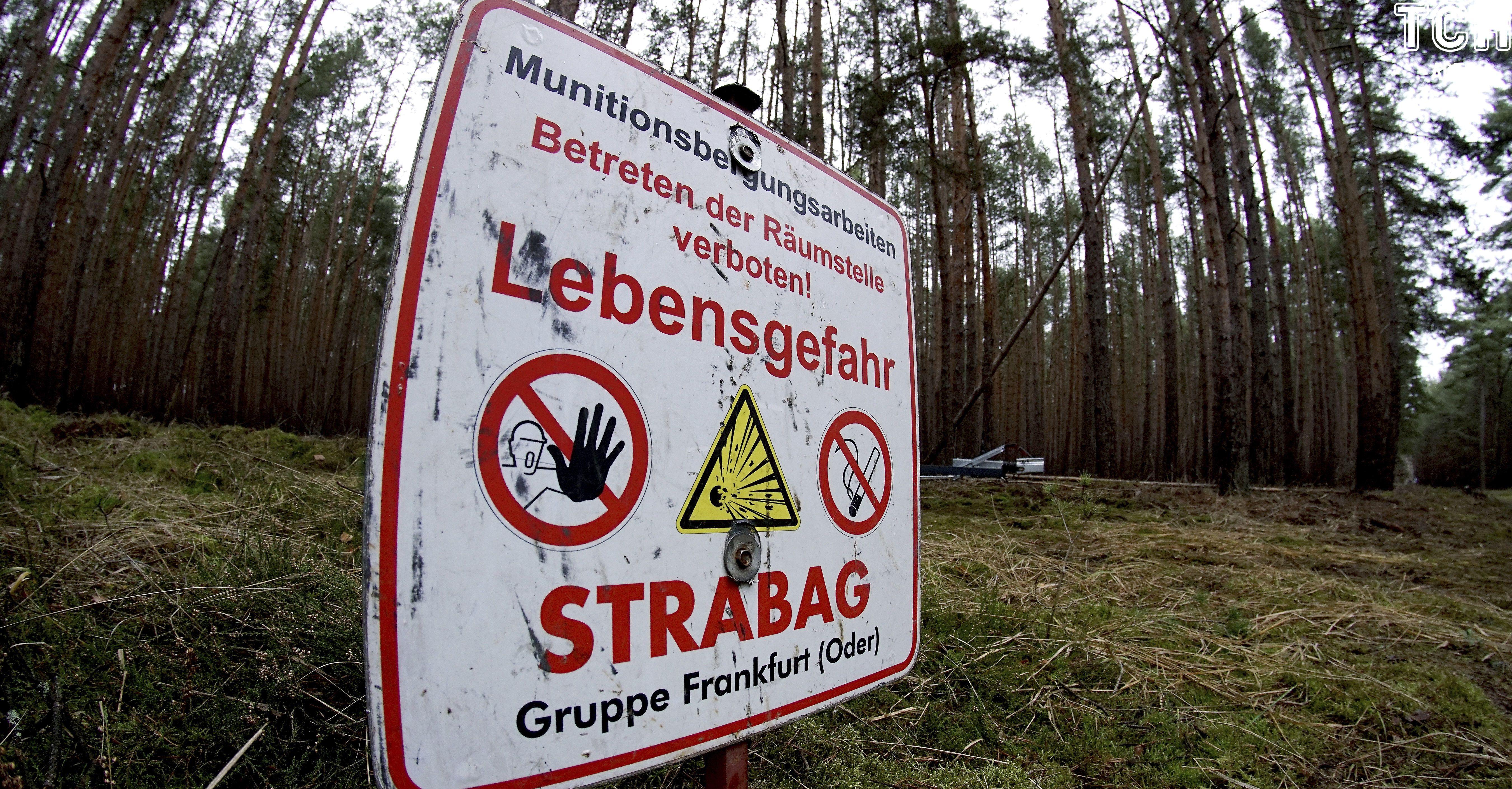 Компания Tesla ищет мины и рубит лес в Германии 2