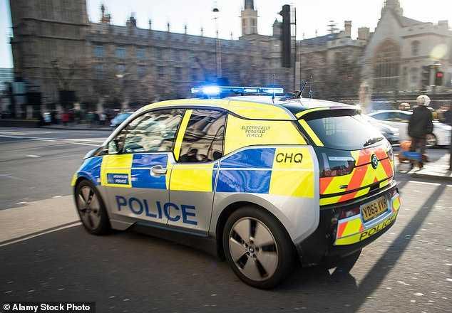 Британская полиция закупила бесполезные электрокары 1