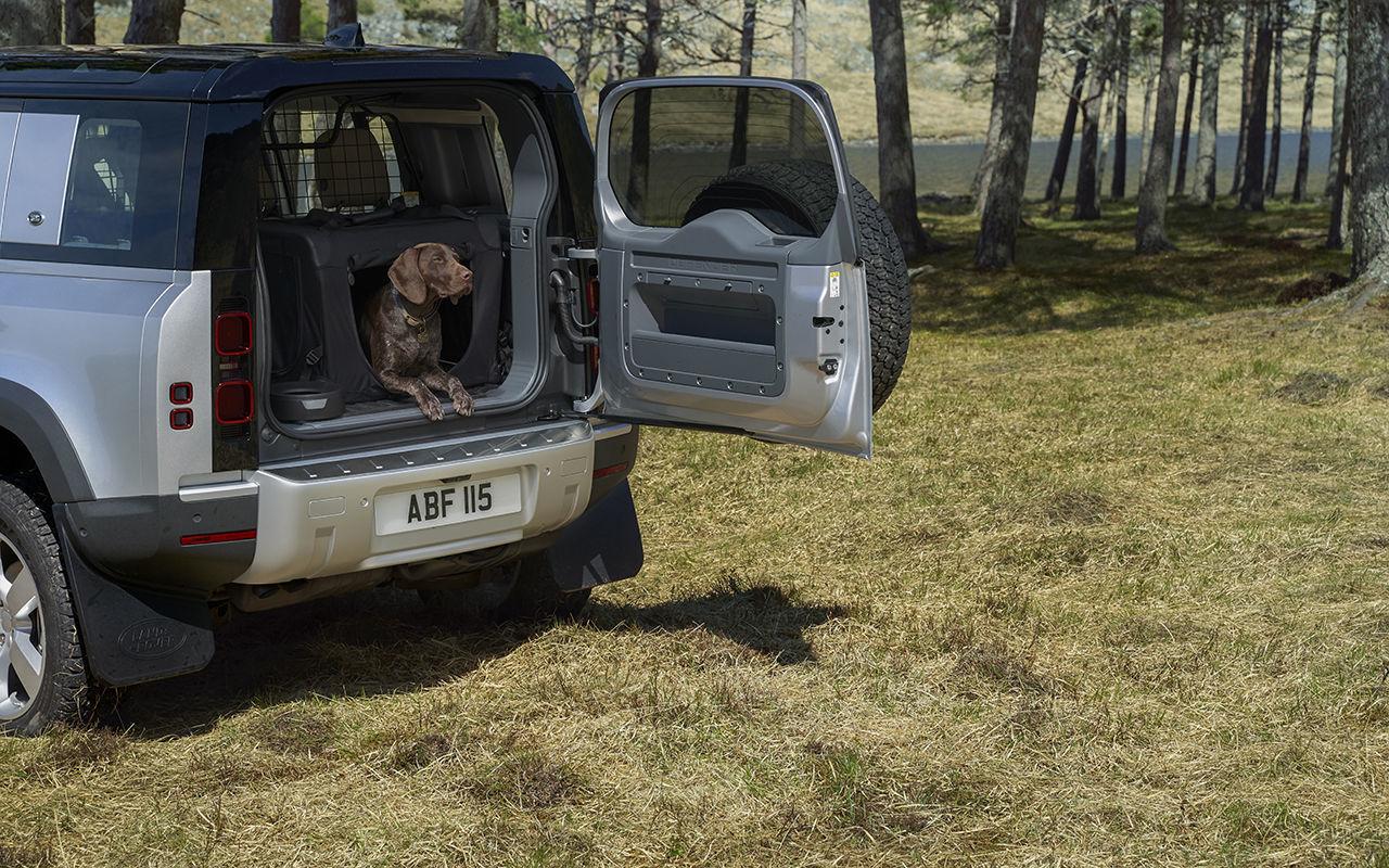 Jaguar Land Rover сконструировал лапу собаки 2