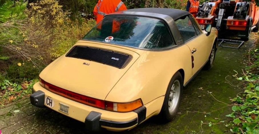 Белки приспособили Porsche 911 для хранения орехов 1