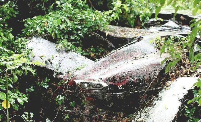 Винтажный Jaguar E-Type нашли в кустах и восстановили 1