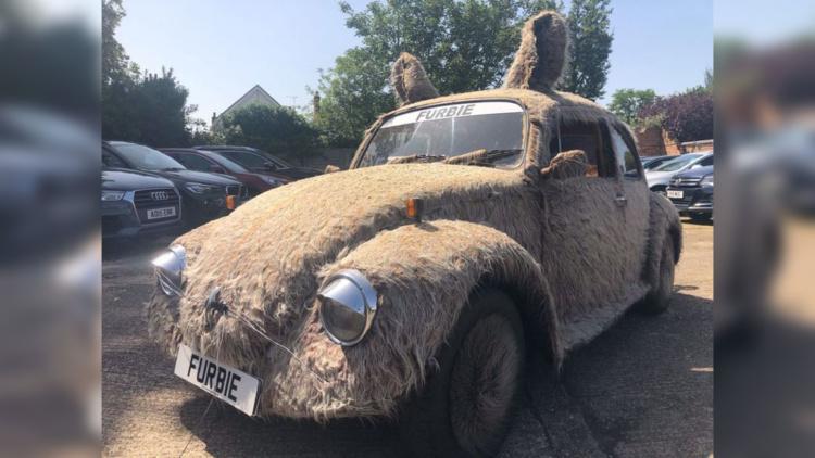 На продажу выставили «мохнатый» Volkswagen Beetle 1