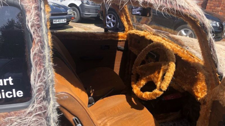 На продажу выставили «мохнатый» Volkswagen Beetle 2
