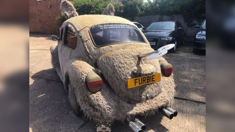 На продажу выставили «мохнатый» Volkswagen Beetle 3