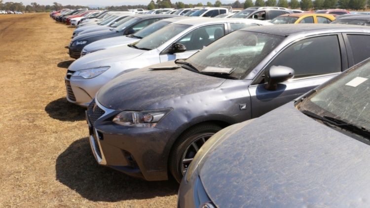 На огромной стоянке скопились тысячи побитых градом автомобилей 1