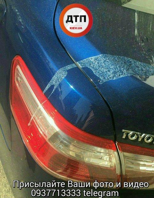 Незаконную парковку пытались ликвидировать кислотой 1