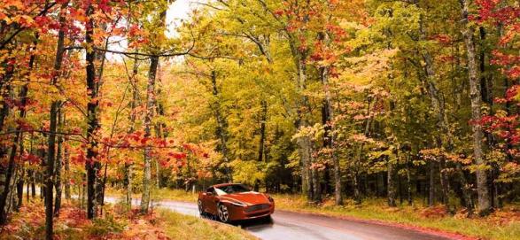 Препятствия, которые поджидают водителей осенью 1