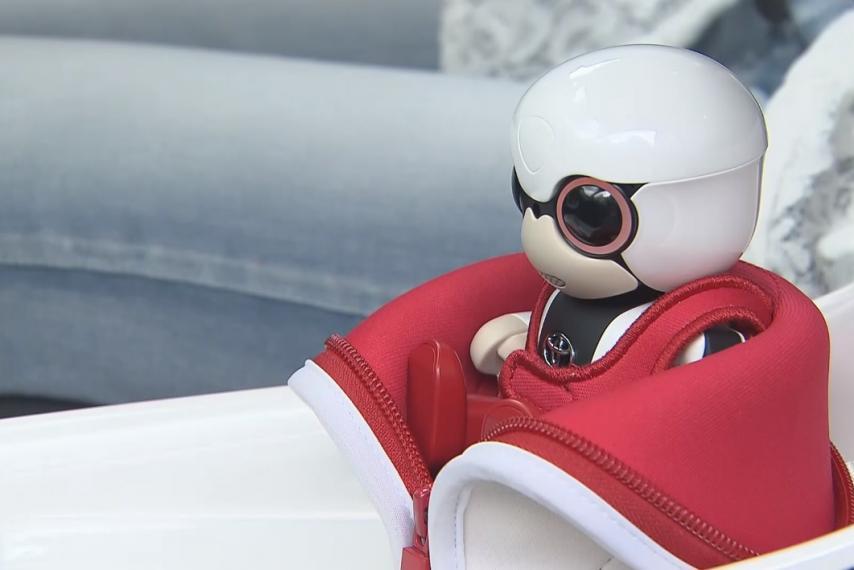 Toyota начала продажи «ручных» роботов 3