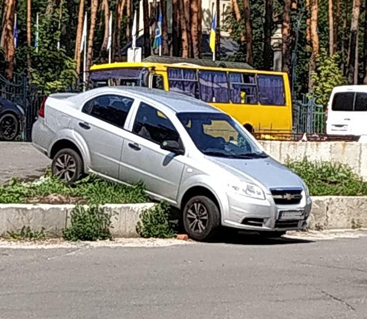 Заколдованное место: где в Украине происходят самые курьезные ДТП (фото) 5
