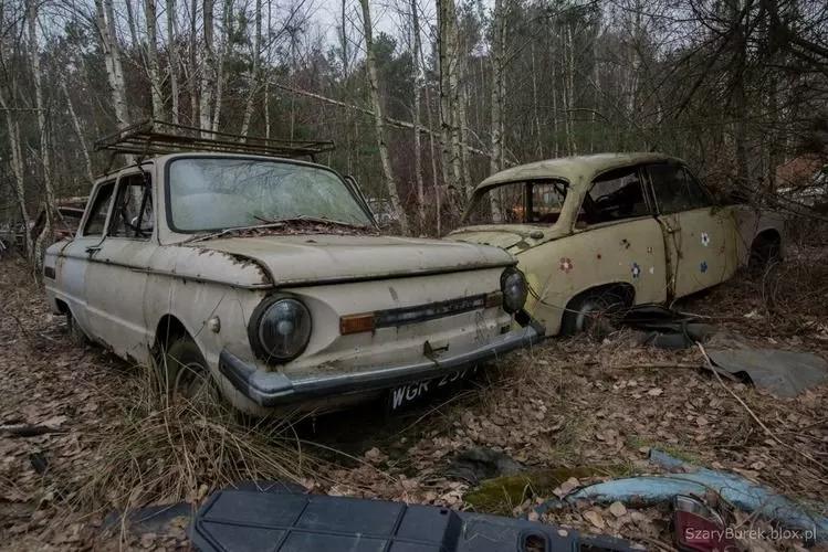 В Европе нашли уникальную свалку с украинскими автомобилями 3