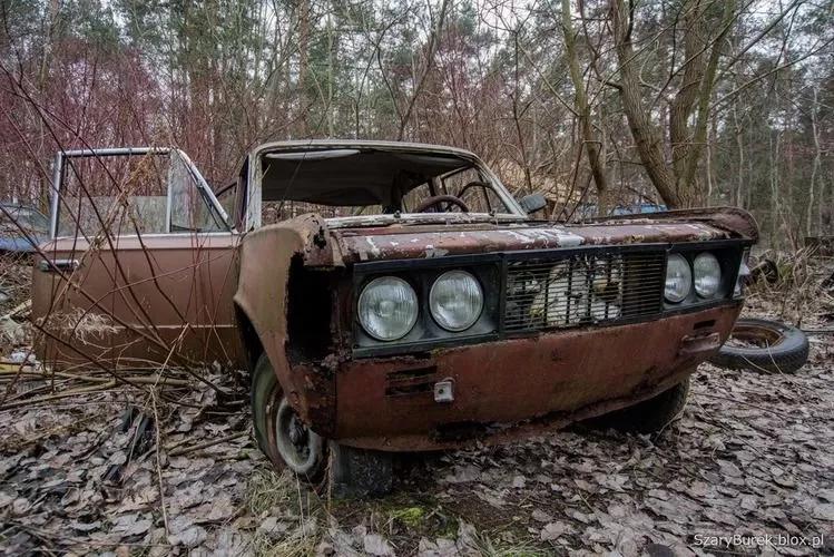 В Европе нашли уникальную свалку с украинскими автомобилями 6