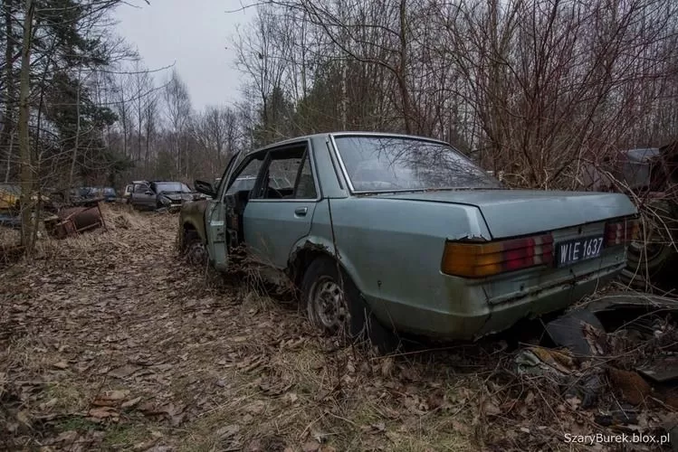 В Европе нашли уникальную свалку с украинскими автомобилями 2