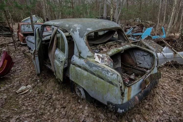 В Европе нашли уникальную свалку с украинскими автомобилями 4