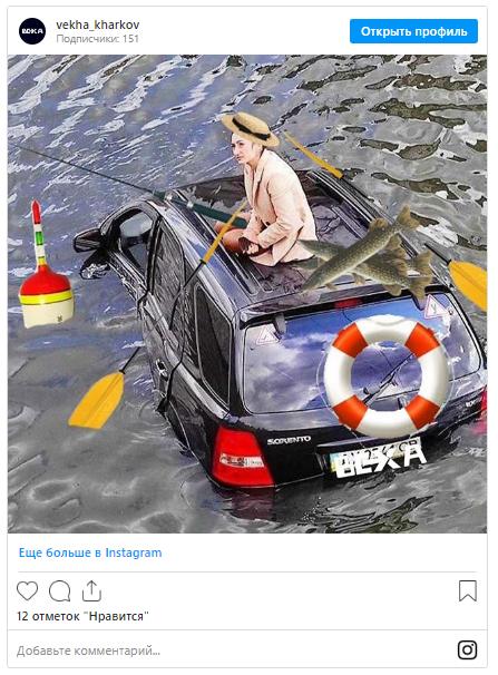 Автоледи из Харькова, объезжая котика, слетела в реку и стала мемом 1
