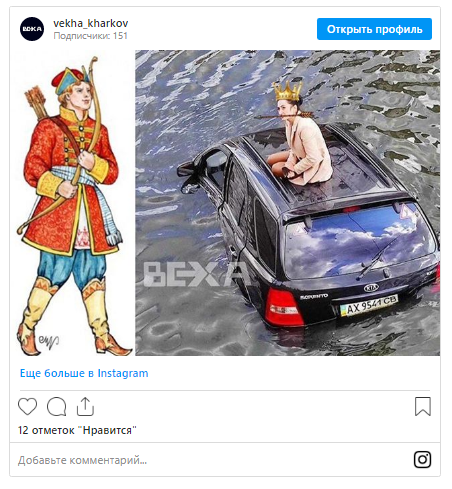 Автоледи из Харькова, объезжая котика, слетела в реку и стала мемом 3