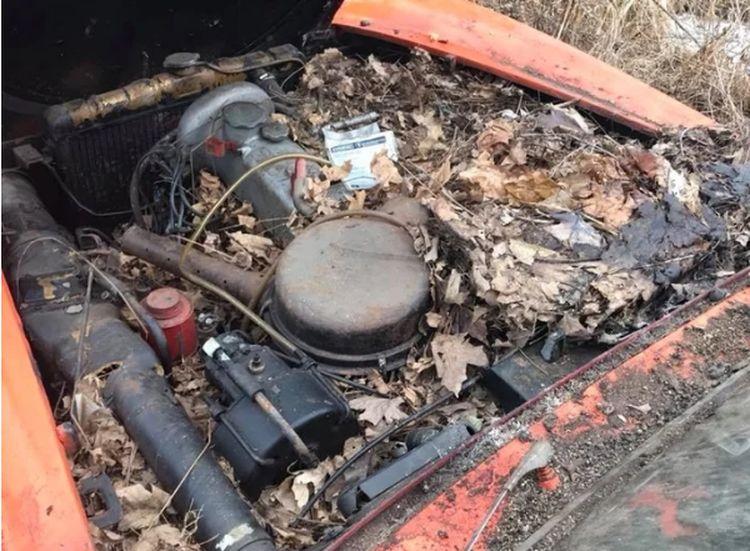 Обнаружен «Мерседес», простоявший в заброшенном гараже 44 года 2