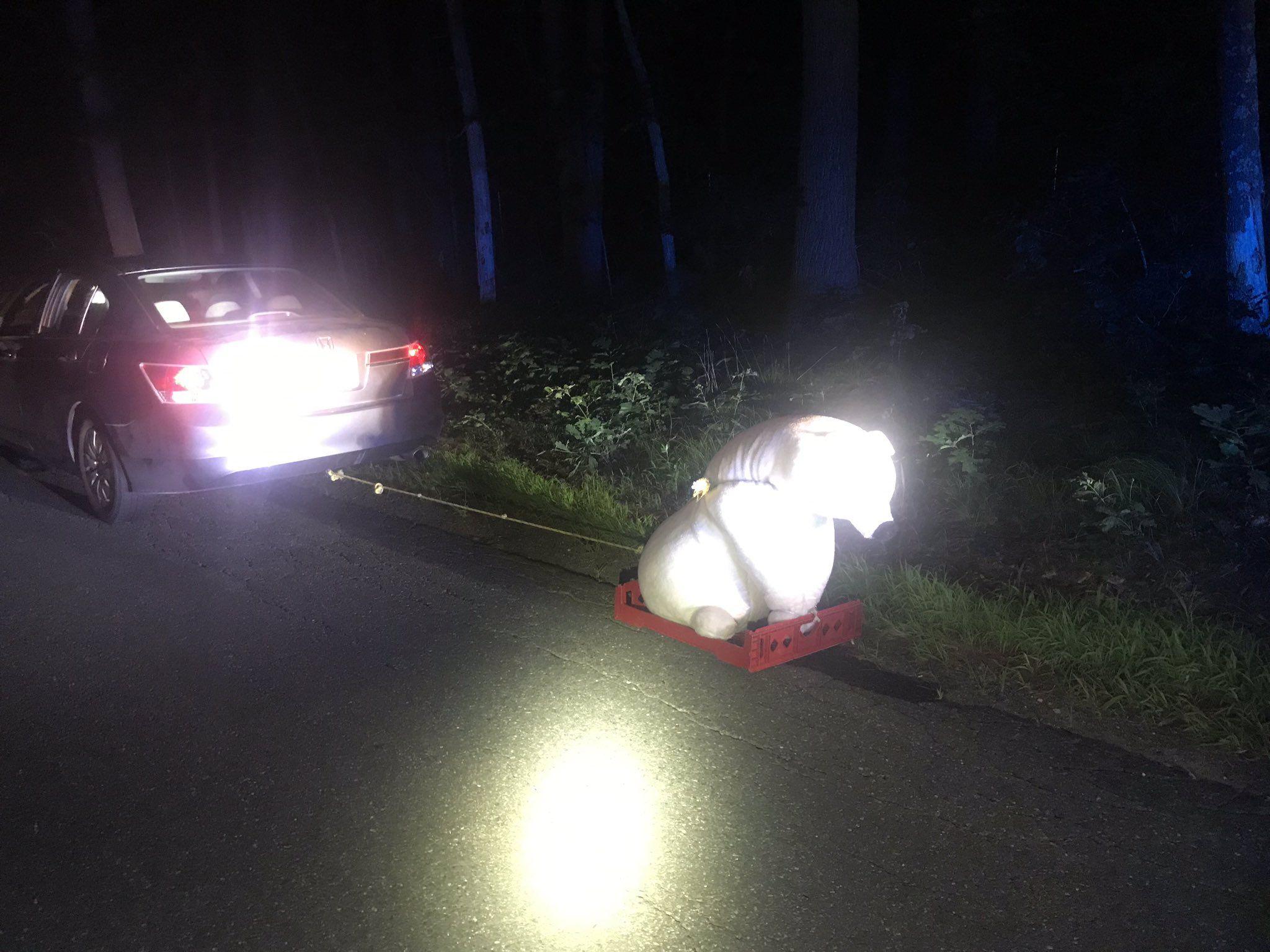 В США водителя остановили за буксировку плюшевого медведя 1