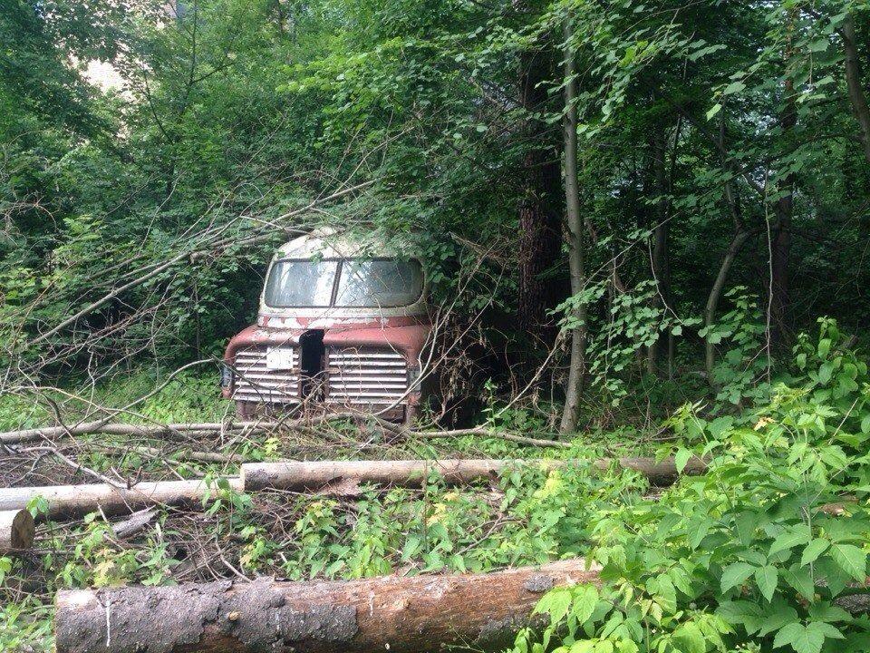 Ikarus Lux – автобус-ракета, найденный в лесопосадке 1