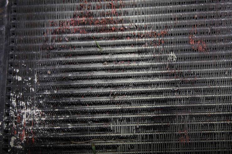 Нужна ли защитная сетка в решетке радиатора 2
