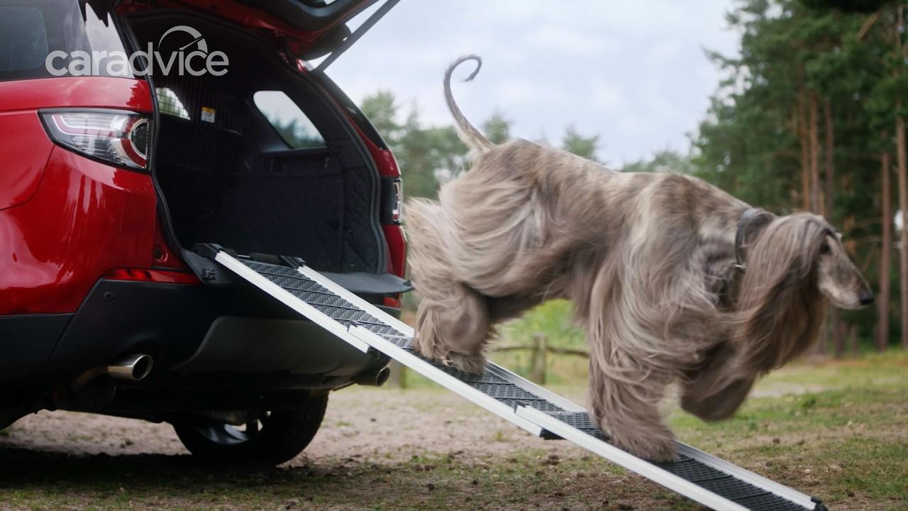 Land Rover предлагает аксессуары для собак 3
