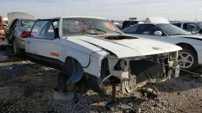 Редкий Ford Mustang Cobra нашел приют на свалке 1