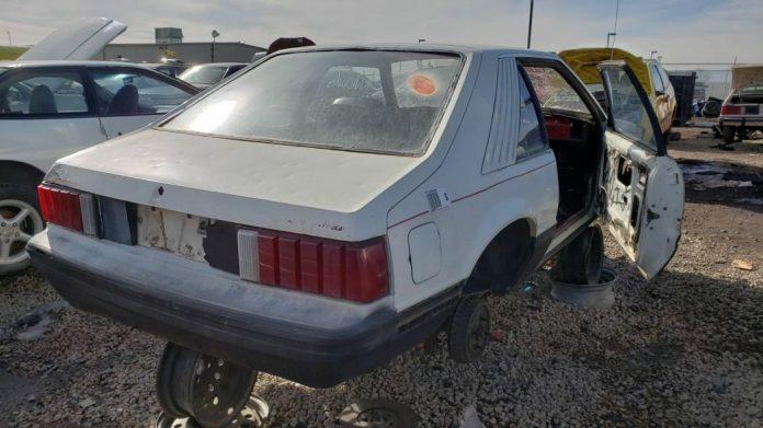 Редкий Ford Mustang Cobra нашел приют на свалке 3