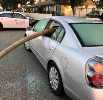 Почему нельзя парковать автомобиль возле пожарного гидранта 3