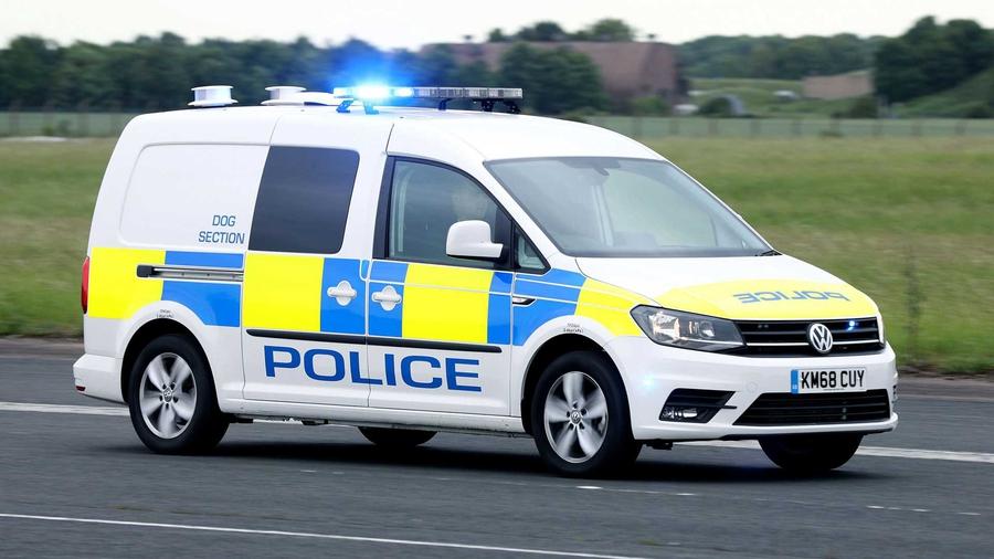 Volkswagen создал фургон для транспортировки полицейских собак 1