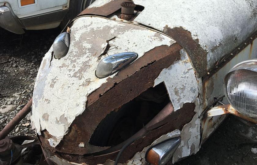 В США обнаружили «химеру на колесах» 1