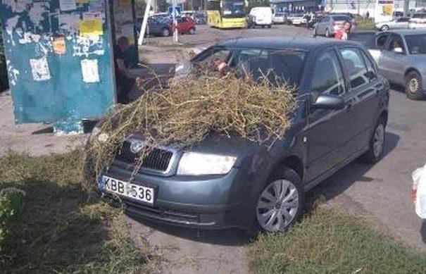 В Киеве оригинально наказали «героя парковки» 1