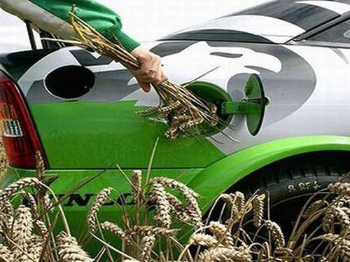В Европе растут продажи авто на альтернативном топливе 1