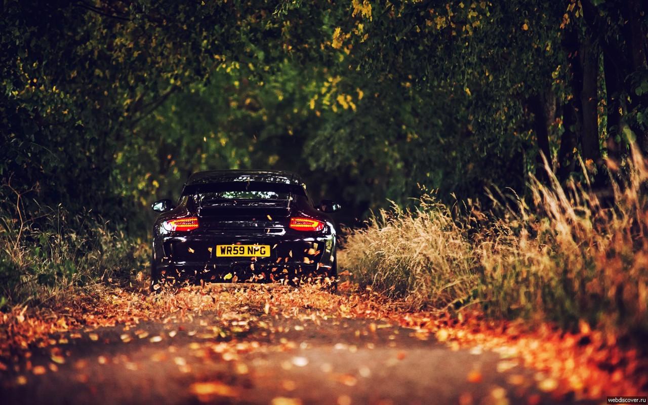 «Курс на осень»: электромобили дешевеют, топливо дорожает 1