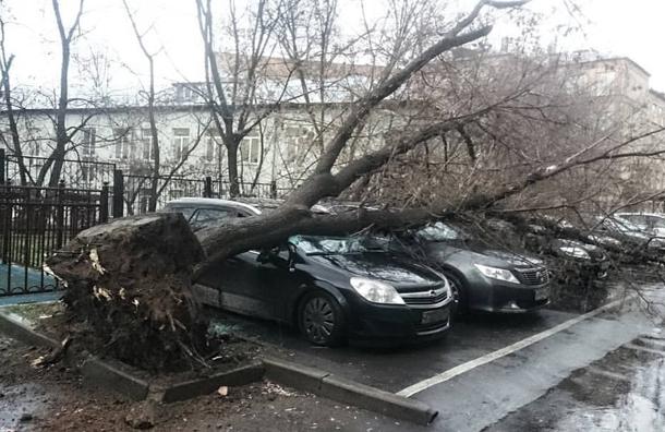 Украинская ГСЧС обратилась к автомобилистам 1
