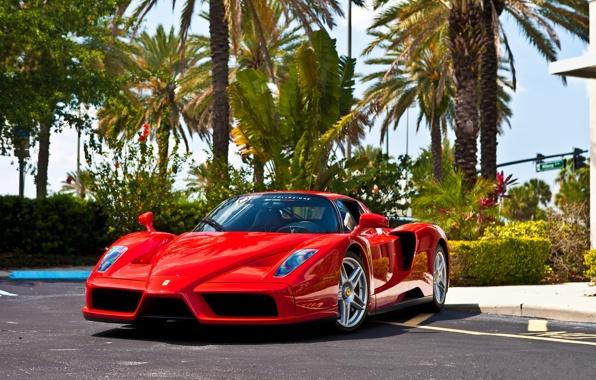 «Фирменный цвет» или почему Subaru синие, а Ferrari — красные 1