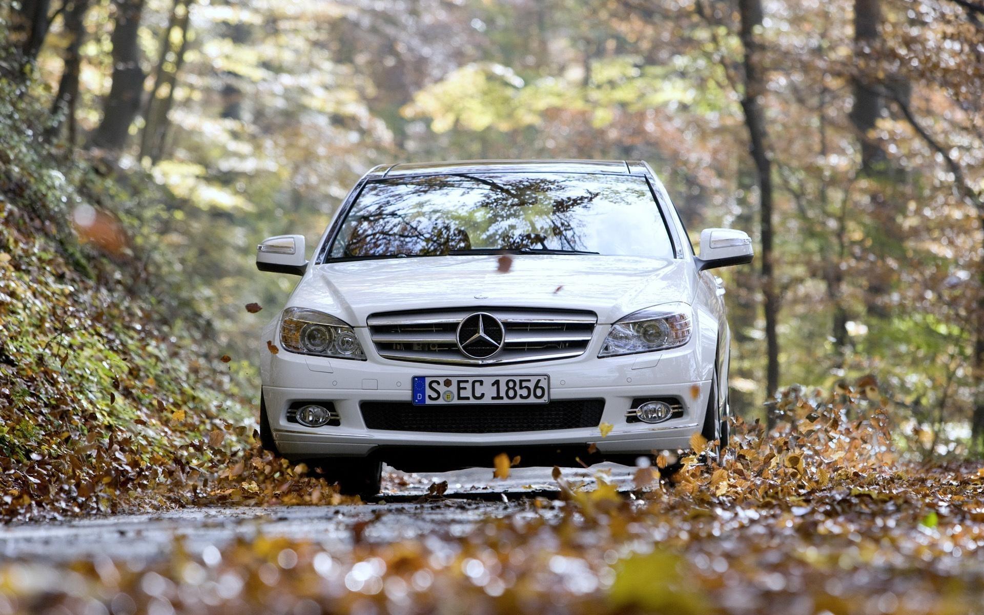 Какую опасность для автомобилистов скрывают опавшие осенние листья 1