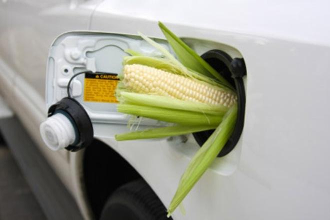 В украинский бензин снова будут добавлять «спирт» 1