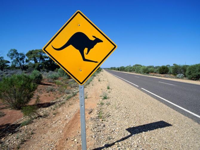 12-летний австралиец проехал за рулем более тысячи километров 1