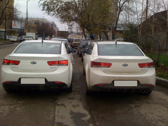 В Украине возросло количество автомобилей «сомнительного происхождения» 2