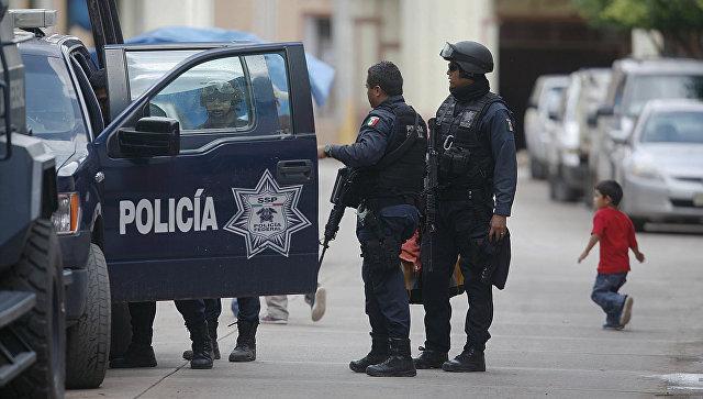 Мексиканские автоугонщики угоняют новые машины десятками за раз 1