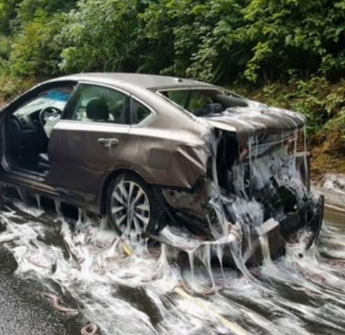 В США трасса утонула в слизи гигантских червей 1