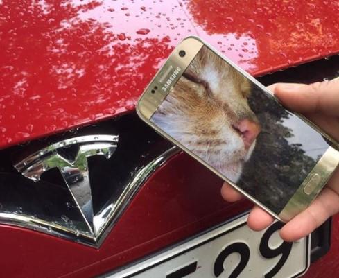 Пользователи обнаружили новое значение логотипа марки Tesla 1