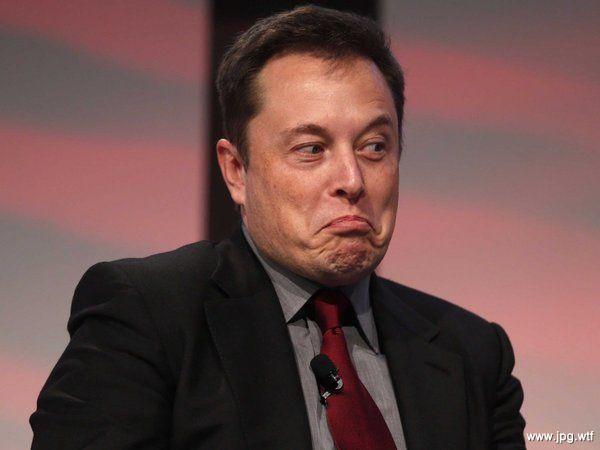 Министры «уговаривают» Маска выпускать Tesla в Украине 2