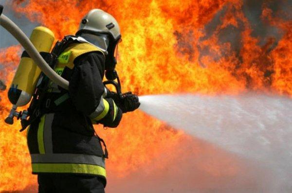 Пожар в автосалоне уничтожил три десятка новеньких автомобилей 1